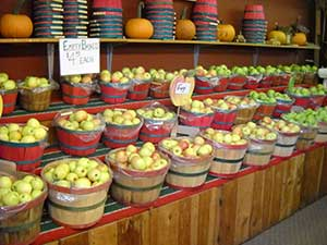 Apples, Pies, Fritters, Pasteries, Jams, Jellies, Ciders ...
